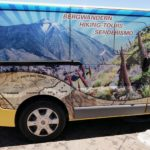 Bus Teneriffa Reiseführer